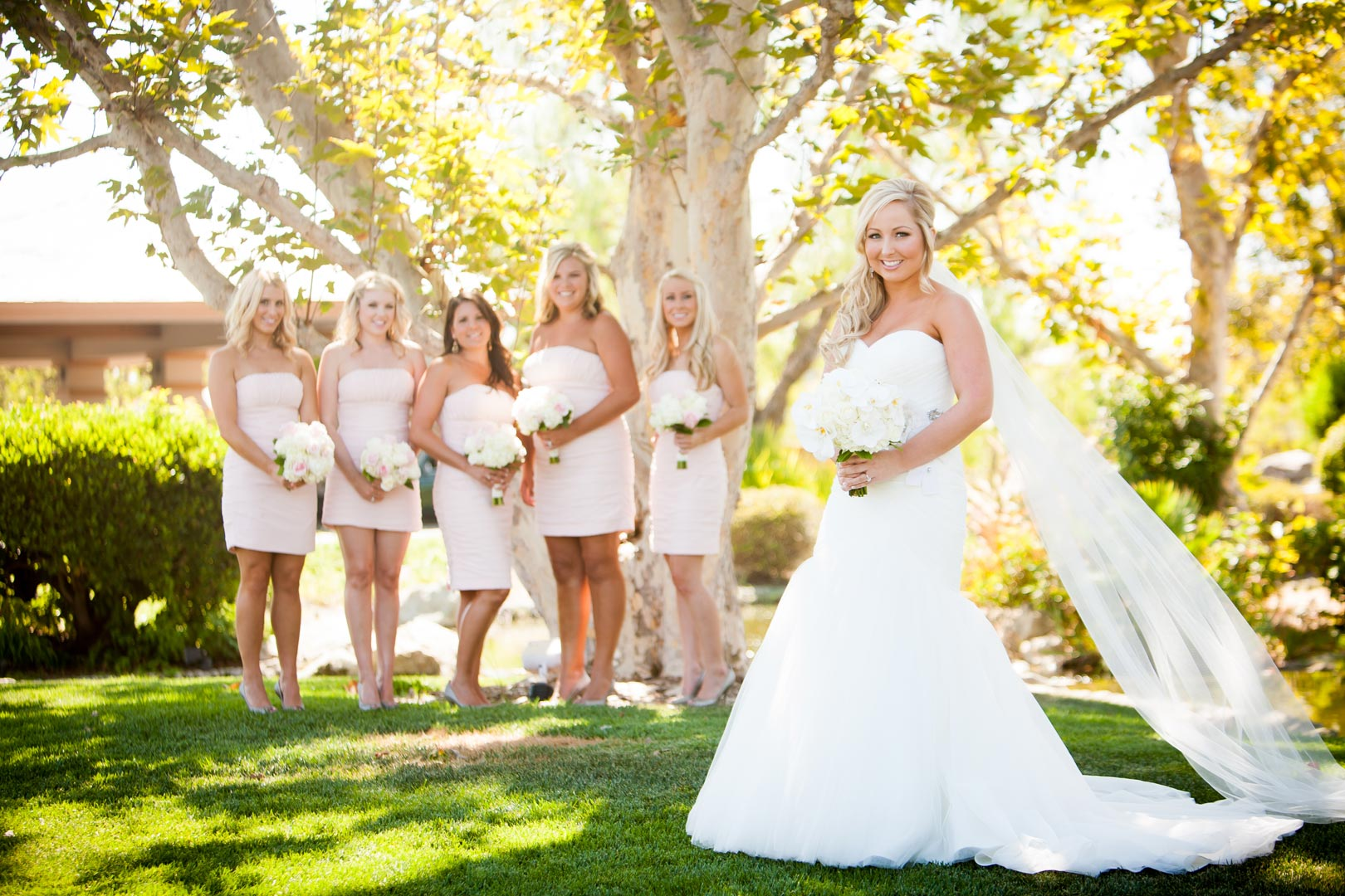 Wedding photographer san diego san diego wedding for Cheap wedding dresses san diego